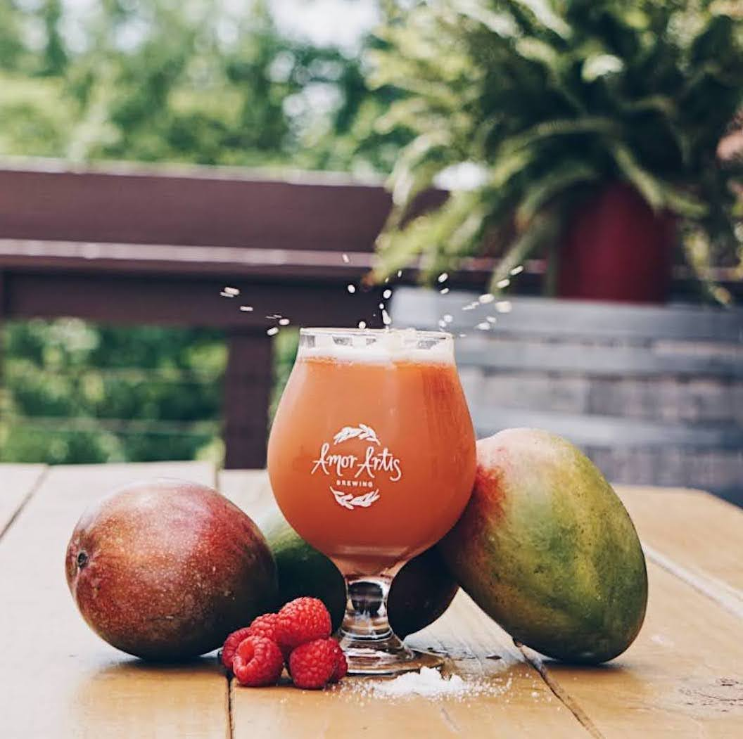 Gose Raspberry Mango